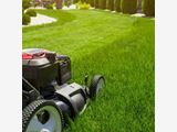 Lawn Mowing Service in Auckland